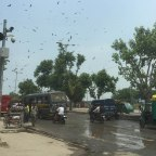 Day 12: 30th June 2015 – Varanasi to Delhi