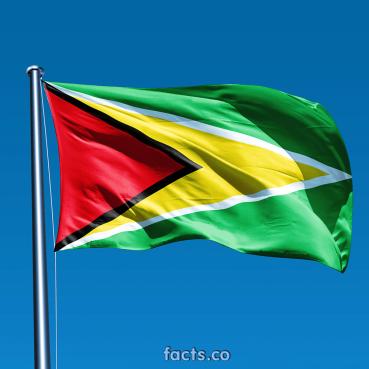 GuyanaFlagPicture2
